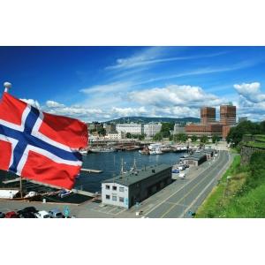 Oslo Level 1 Shoulder Course
